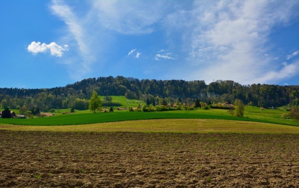 arable-land-wallpaper-k